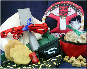 Wags for Walkers Gift Basket imagerjs