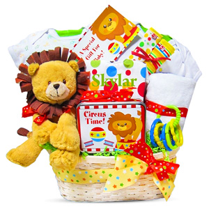 Day At The Circus Baby Gift Basket imagerjs