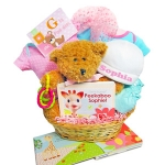 Teddy Bear Baby Gift Basket (Pink and Blue)