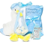 Stork Delivery Baby Gift Set