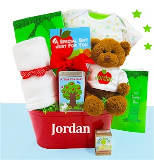 Grow A Tree For Baby Basket imagerjs