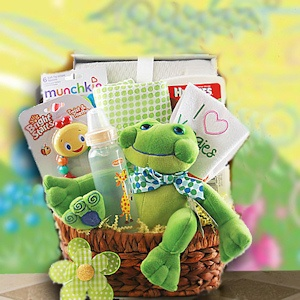 New Baby Gift Basket imagerjs