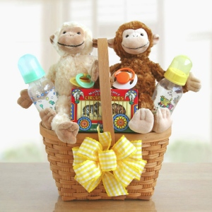 Double Delights Twin Baby Gift Basket imagerjs
