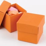 Mix and Match Favor Boxes - Orange (Set of 25)