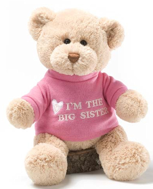 Personalized Big Sister Teddy Bear imagerjs