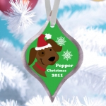Cat or Dog Personalized Pet Christmas Ornament