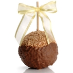 Caramel Toffee Chocolate Dipped Apple