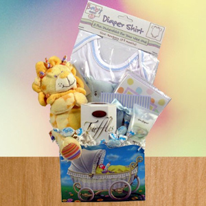 Welcome New Baby Gift imagerjs