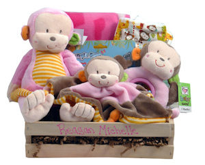 Monkey Baby Gift (Pink or Blue) imagerjs