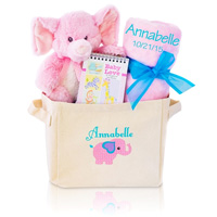 Welcome Home Baby Gift Tote