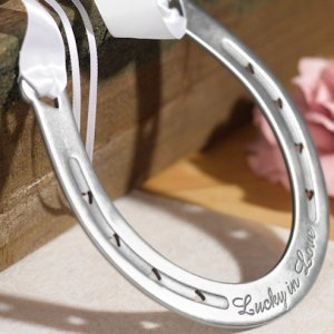 'Lucky in Love' Horseshoe image