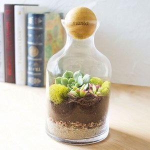 Personalized Glass Terrarium with Wood Ball image