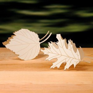 Laser Expressions Leaf Folded Place Card - Set of 4 image