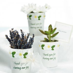 Mini Flower Pots (Set of 6) image