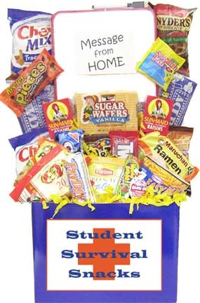 College Student Survival Care Package image
