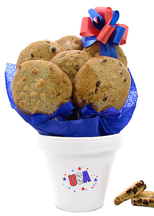 USA Cookie Pot imagerjs