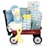 Personalized Look What The Stork Delivered Baby Gift