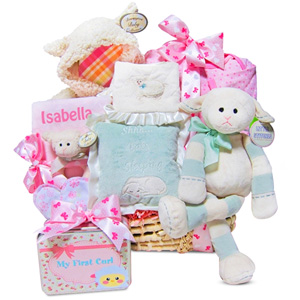 Personalized Lamby Moses Baby Girl Basket imagerjs