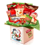 Night Before Christmas Kids Care Package Gift