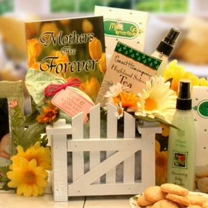 Hugs For Mom Mother's Day Gift Basket imagerjs