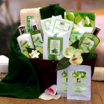 Cucumber & Melon Spa Gift Basket