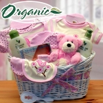 Organic New Baby Girl Gift Basket