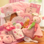 Hunny Bunny's New Baby Girl Gift Basket