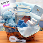 Simply Baby Basics Gift Basket