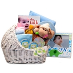 Bundle of Joy Baby Bassinet