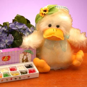 Quacky Duckling Easter Gift Set imagerjs