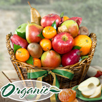 Organic Fruit Gift Basket - Elemental Delights
