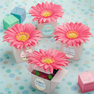Personalized Pink Daisy Baby Boxes imagerjs