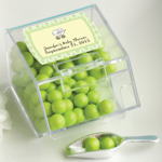 Personalized Baby Shower Candy Bin & Scoop Favors