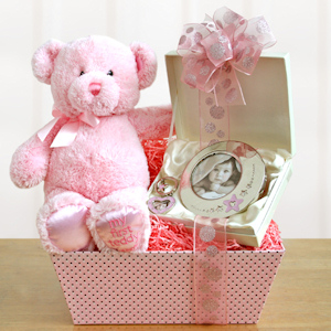 My First Teddy Welcome Baby Girl imagerjs