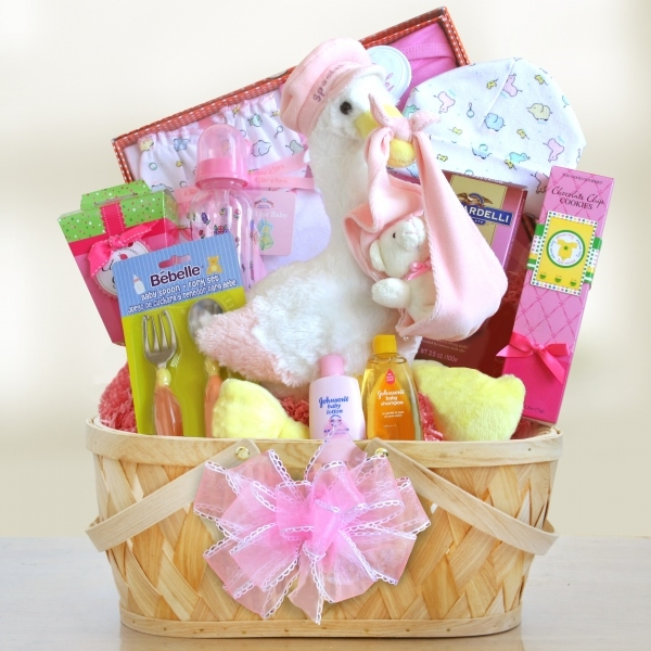 Baby Gift Baskets International Delivery : Special stork delivery baby basket aa gifts baskets
