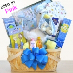 Special Stork Delivery Baby Basket