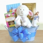 Baby Blessings Gift Basket (Pink or Blue)