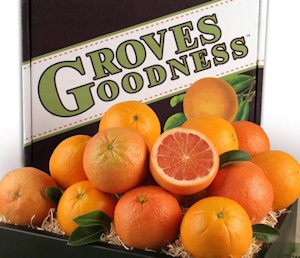 Fresh Citrus Selection Gift Box imagerjs