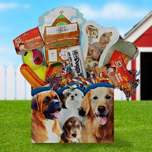 Man's Best Friend Gift Box data-pin-no-hover=