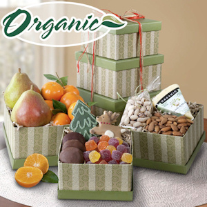 Holiday Organic Fruit and Snack Tower imagerjs