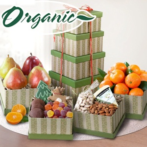 Organic Grande Fruit and Treats Tower imagerjs