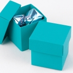 Mix and Match Favor Boxes - Palm (Set of 25)