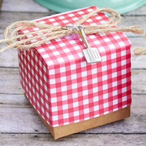 Red Gingham Favor Box with Spatula Charm (Set of 24) imagerjs
