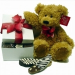 Chocolate-Dipped Biscotti Gift Box & Teddy Bear