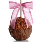 Caramel Pecan Chocolate Dipped Gourmet Apple