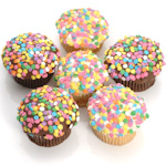 Belgian Chocolate Confetti Cupcakes (6 Pack)