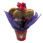 Hanging Heart Cookie Gift Bouquet