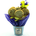 Butterfly Gourmet Cookie Pot