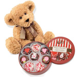Chocolate Heart Sprinkles Oreo Tin & Teddy Bear