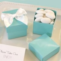 Aqua Blue Mini Favor Boxes (Set of 12)